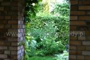 ogród_49