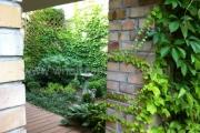 ogród_50