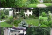 ogród_79