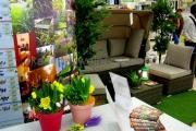 projektowanie ogrodów Leroy Merlin