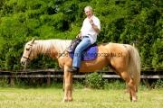 impreza plenerowa konie