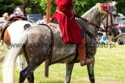 pokaz walki na koniach