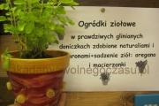 ogródki ziołowe