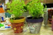 zdobienie doniczek z ziołami