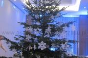 świąteczna duża choinka